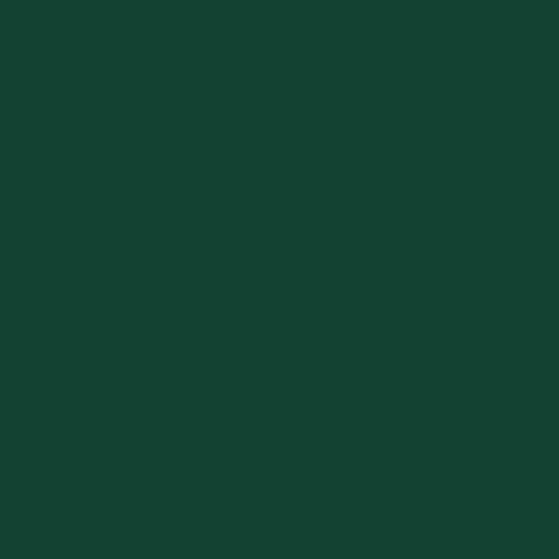 Tmavě zelená RAL 6005