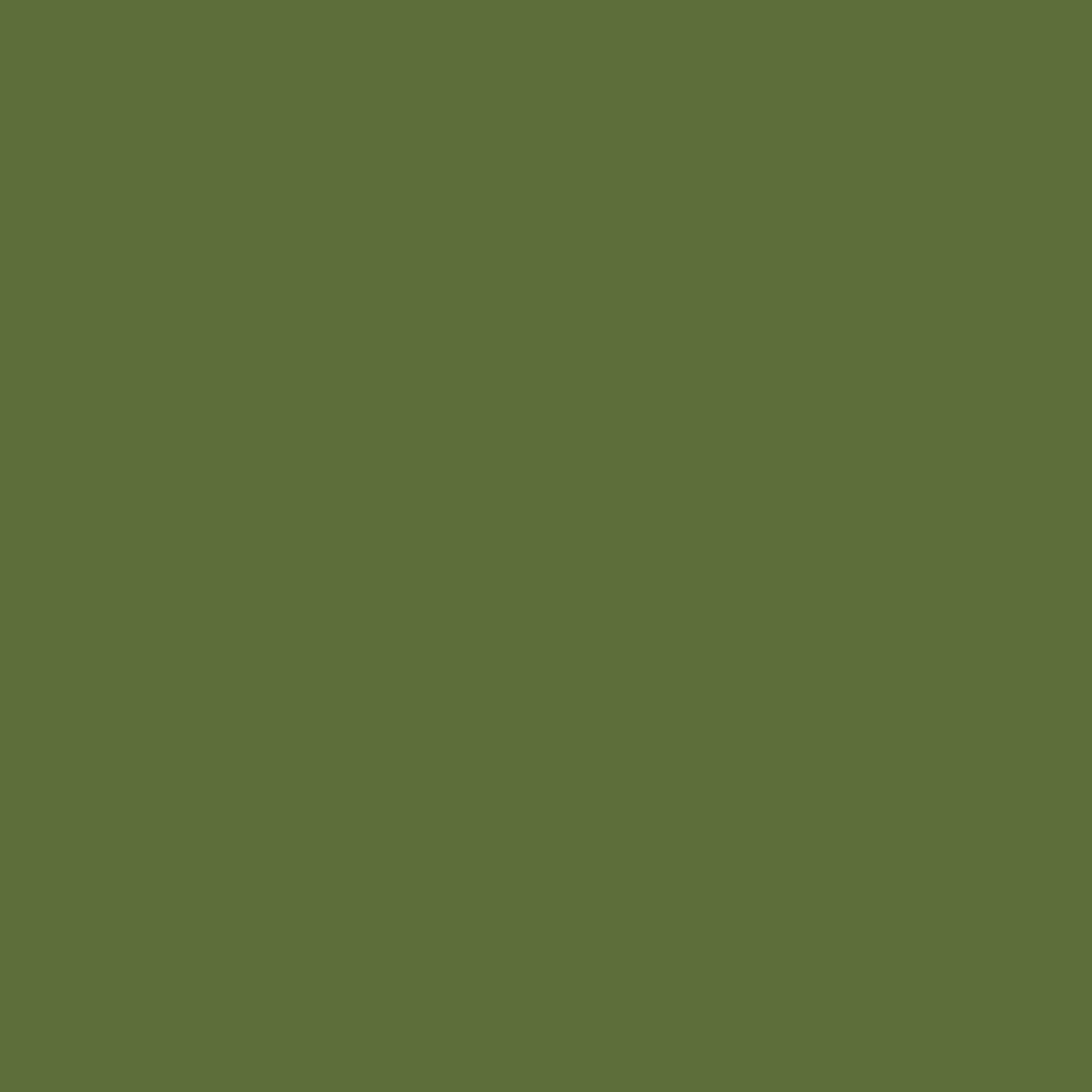Zelená RAL 6025