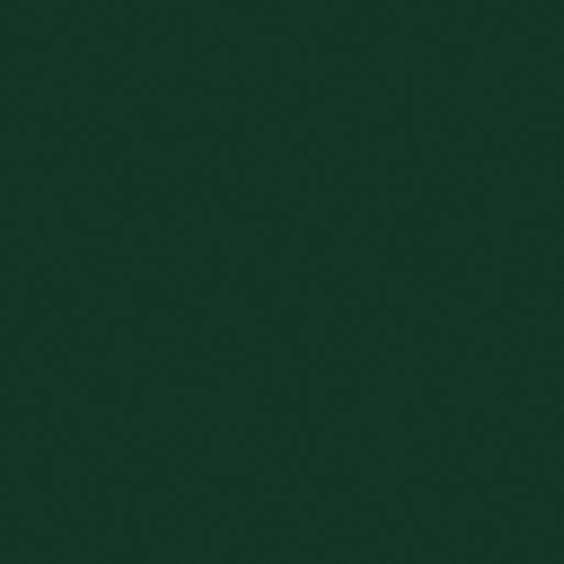 Čelo Tmavě zelená U606