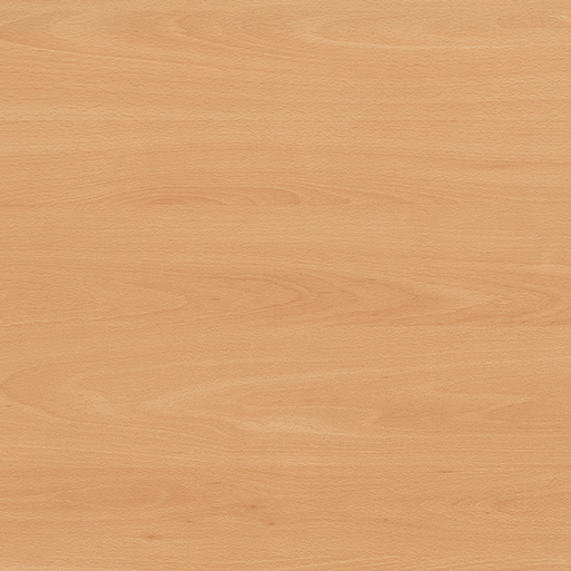 Korpus Buk Ellmau H1582