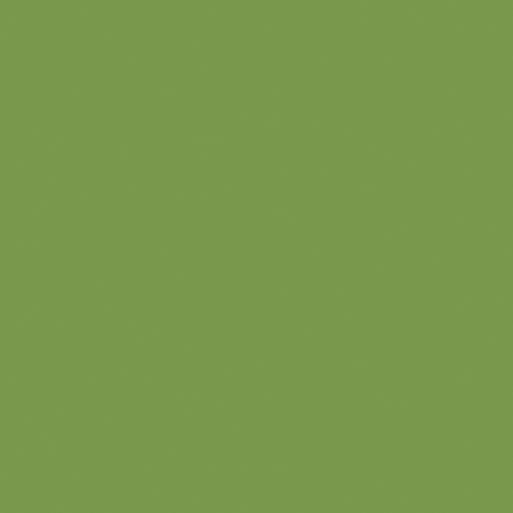 Korpus Zelená U626